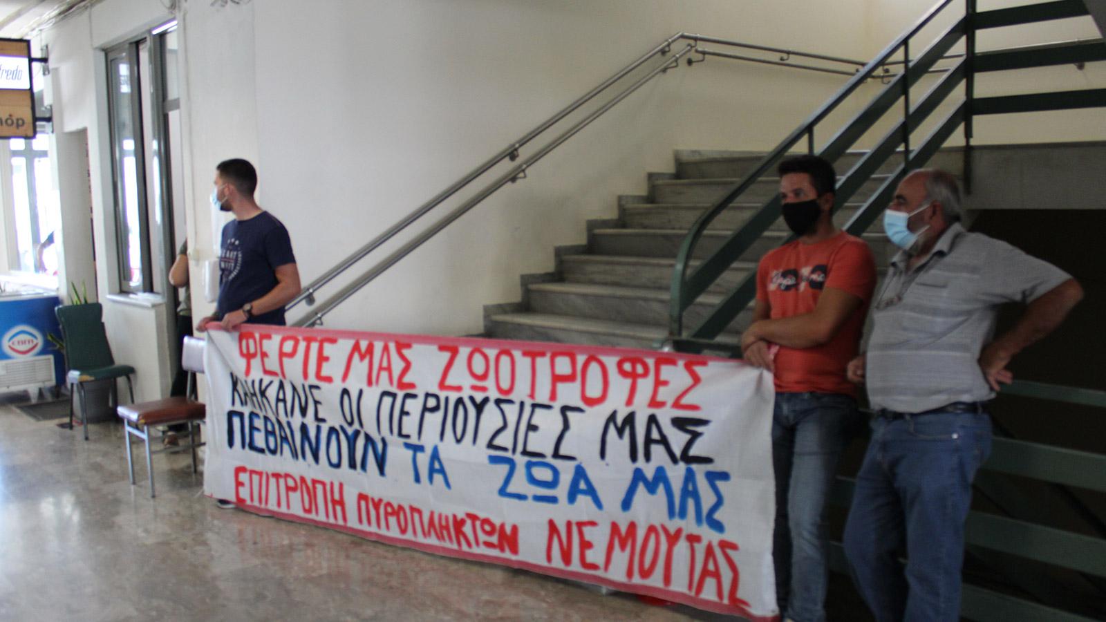 Συντονιστική Επιτροπή Πυροπλήκτων Ηλείας: Απέκλεισαν το κτίριο της ΠΕ Ηλείας στον Πύργο για άμεση αποκατάσταση των ζημιών τους στο 100% (ΒΙΝΤΕΟ-photos}