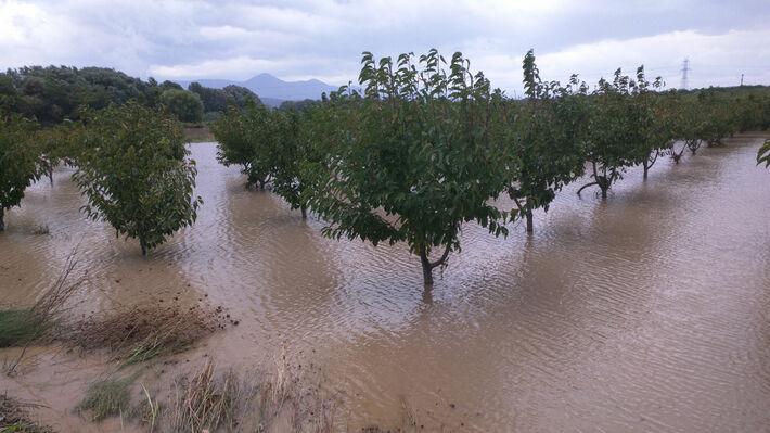 Από την καταστροφική πλημμύρα στην περιοχή της Φθιώτιδας
