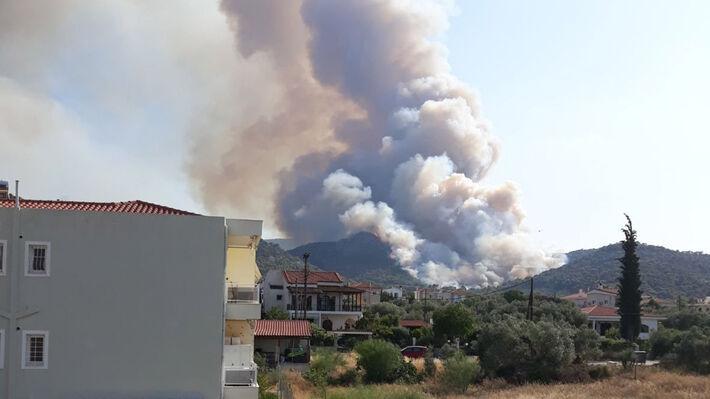 Από την τελευταία πυρκαγιά στην Άνω Αλμυρή Κορινθίας